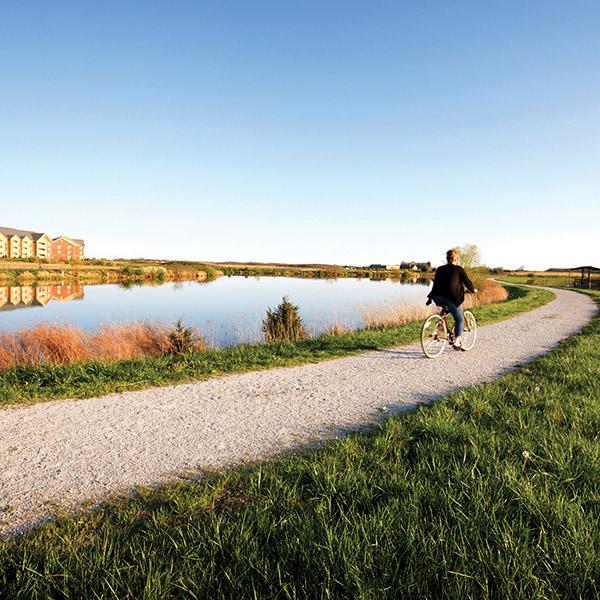 Biking for Commercial Tenants